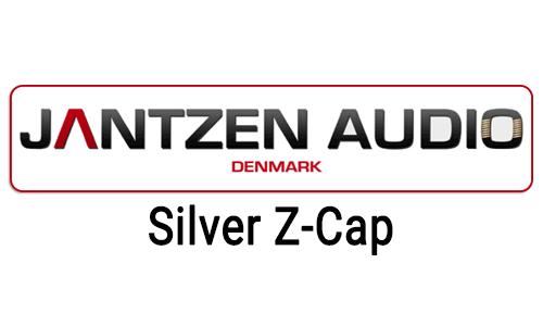 jantzen-cap-silv