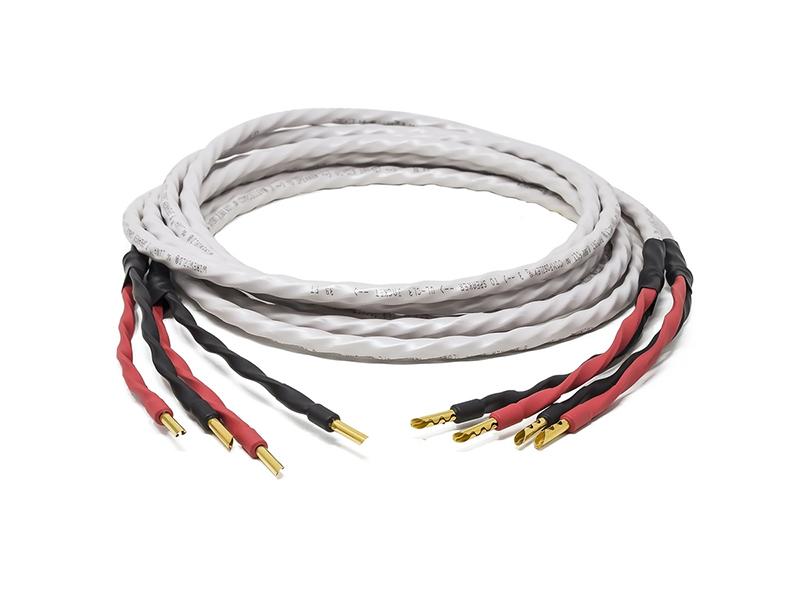 WWORLD-88011